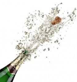 Drinking in the festive spirit! |